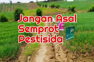 Semprot Pestisida Palsu